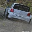 Cette semaine l'équipe Volkswagen a réalisé une séance d'essais de 3 jours sur l'asphalte de ses installations en Allemagne. Jari-Matti Latvala qui l'attendait avec impatience a finalement reçue à la...